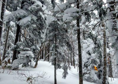 Hokkaido ski packages