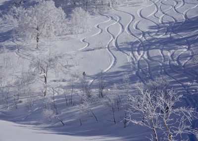 japan skiing guide