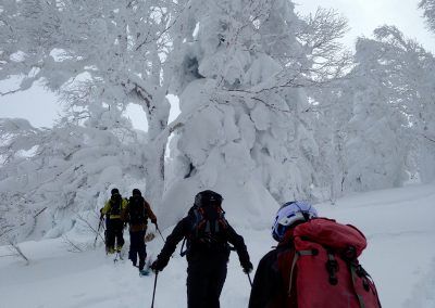 japan skiing season dates
